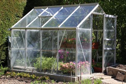 so bauen sie selbst ein gew chshaus und kultivieren pflanzen. Black Bedroom Furniture Sets. Home Design Ideas
